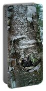 Birch Bark 3 Portable Battery Charger