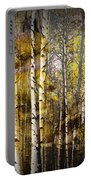 Birch Bark And Trees Abstract Portable Battery Charger