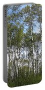 Birch Forest Portable Battery Charger