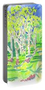 Birch Portable Battery Charger