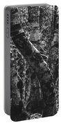 Birch Tree Forest Portable Battery Charger