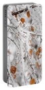 Frost Birch  Portable Battery Charger