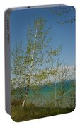 Birch Tree Over Lake Portable Battery Charger