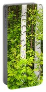 Birch Tree Panorama Portable Battery Charger