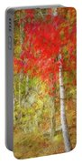Birch Trees In Autumn Portable Battery Charger