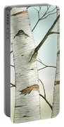 Birch Trees In Late Autumn Portable Battery Charger