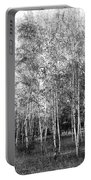 Birch Trees1 Portable Battery Charger