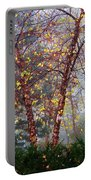 Birch Weightlessness Portable Battery Charger