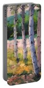 Birches 04 Portable Battery Charger
