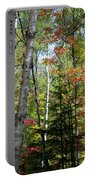 Birches In Fall Forest Portable Battery Charger