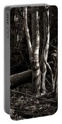 Birches In The Wood Portable Battery Charger