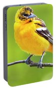 Bird And Blooms - Baltimore Oriole Portable Battery Charger
