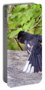 Bird Behavior - Eastern Towhee Fans His Tail Portable Battery Charger