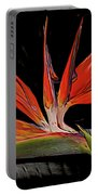 Bird In Flight Vivid Colors Portable Battery Charger