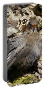 Bird In Hiding Portable Battery Charger