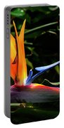 Bird Of Paradise Flower Portable Battery Charger by Brian Harig