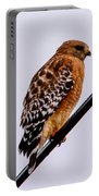 Bird On A Wire With Attitude Portable Battery Charger