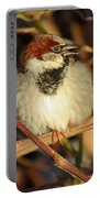 Bird Song Portable Battery Charger