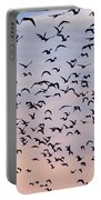 Birds A Flock Of Seagulls Portable Battery Charger