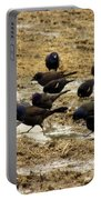 Birds In The Mud Portable Battery Charger