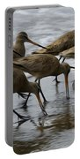 Birds Of A Feather 1 Portable Battery Charger