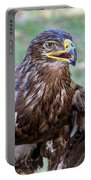 Birds Of Prey Series 3 Portable Battery Charger