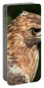 Birds Of Prey Series 5 Portable Battery Charger
