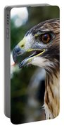 Birds Of Prey Series Portable Battery Charger