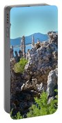 Birds On Tufa Towers-mono Lake Portable Battery Charger