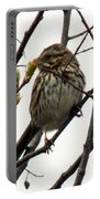 Birdy Pose Portable Battery Charger