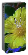 Bishop's Cap Cactus Portable Battery Charger