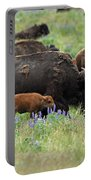 Bison And Lupine Portable Battery Charger