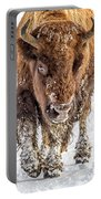 Bison Approaching  8163 Portable Battery Charger