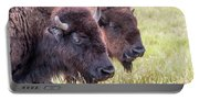 Bison Closeup View Portable Battery Charger