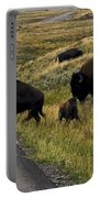Bison Disrupting Traffic Portable Battery Charger