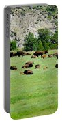 Bison Herd II Portable Battery Charger