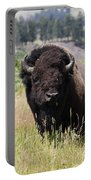 Bison In Grass Portable Battery Charger