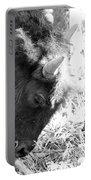 Bison Portrait Monochrome Portable Battery Charger