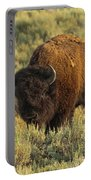 Bison Portable Battery Charger by Sebastian Musial