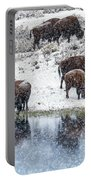 Bison Snow Reflecton Portable Battery Charger