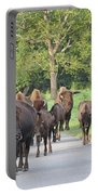 Bison Traffic Jam Portable Battery Charger
