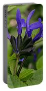Black And Blue Salvia Portable Battery Charger