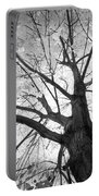 Black And White Autumn Tree  Portable Battery Charger