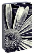 Black And White Daisy  Portable Battery Charger