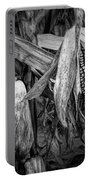 Black And White Ear Of Corn On The Stalk Portable Battery Charger