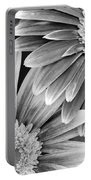 Black And White Gerber Daisies 3 Portable Battery Charger