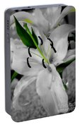 Black And White Life Portable Battery Charger
