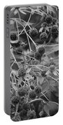 Black And White Sun Flowers  Portable Battery Charger