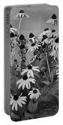 Black And White Susans Portable Battery Charger