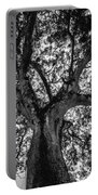 Black And White Tree 4 Portable Battery Charger